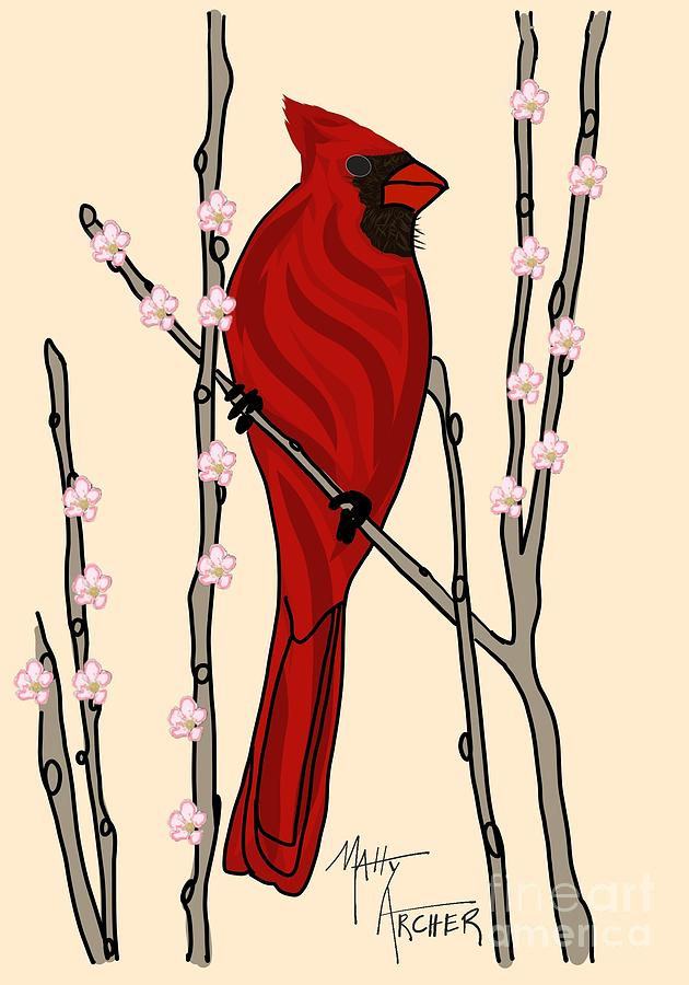 Cherry Blossom Cardinal  by Matty Archer