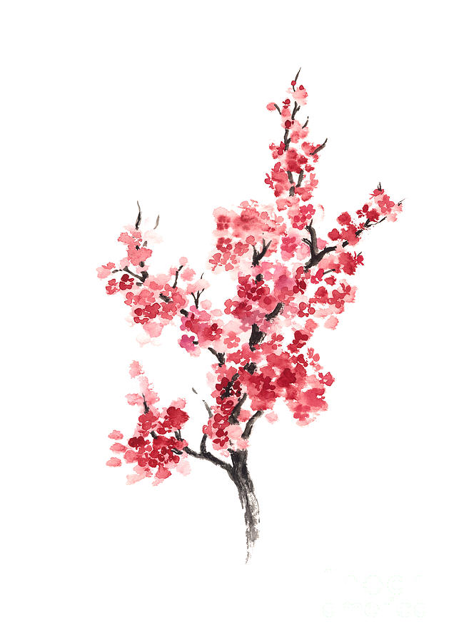 cherry blossom japanese flowers poster painting by joanna szmerdt