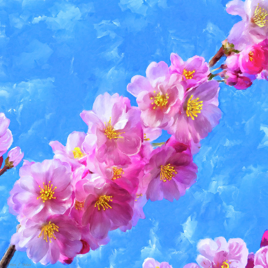 Cherry Blossoms Painting - Cherry Blossom Pink - Impressions Of Spring by Mark Tisdale