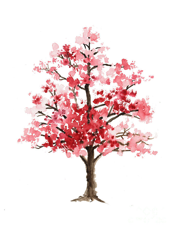 Blossom Tree Drawing: Cherry Blossom Tree Minimalist Watercolor Painting