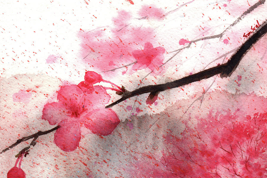 Cherry Blossoms 1 by Sean Seal