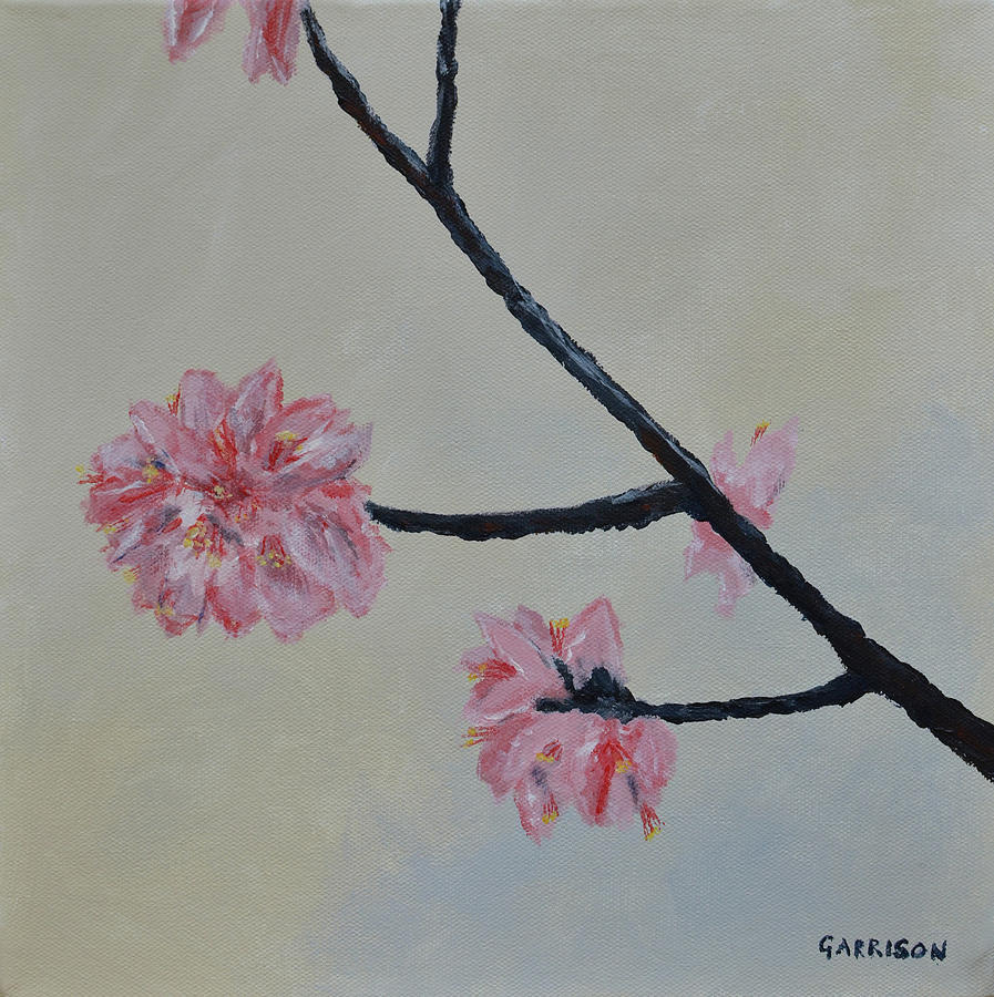 Cherry Painting - Cherry Blossoms by Marina Garrison
