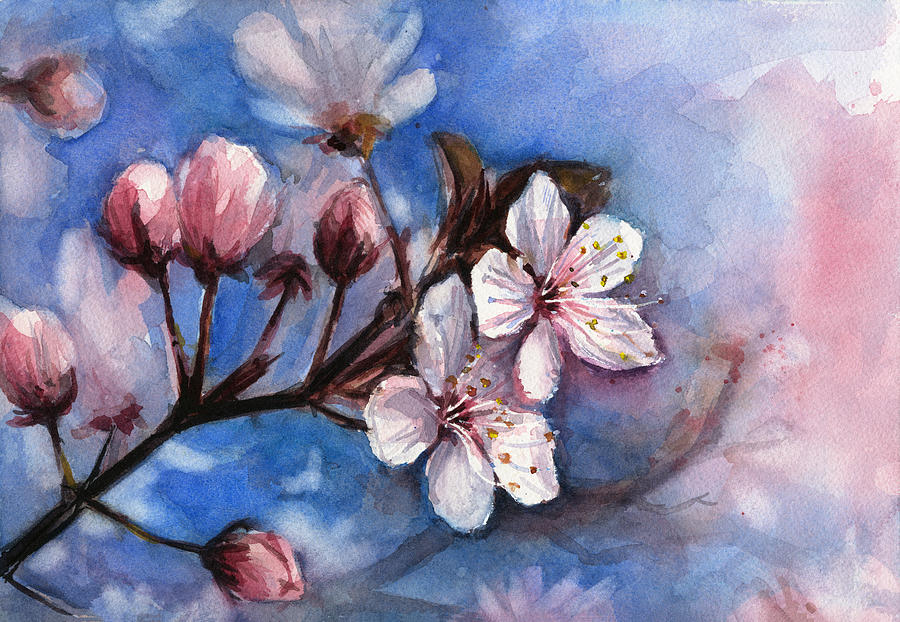 cherry blossoms painting by olga shvartsur