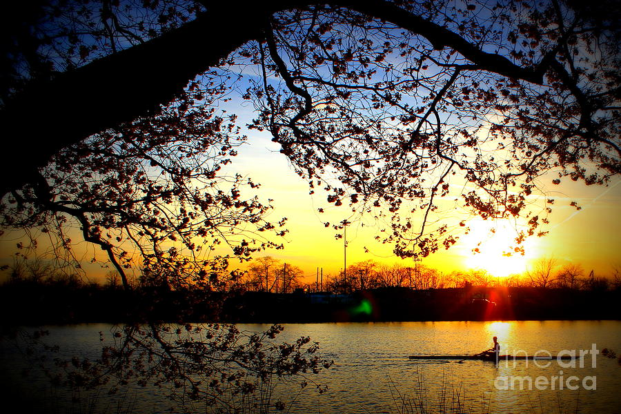 Cherry Blossoms On The Charles Photograph by Hanni Stoklosa