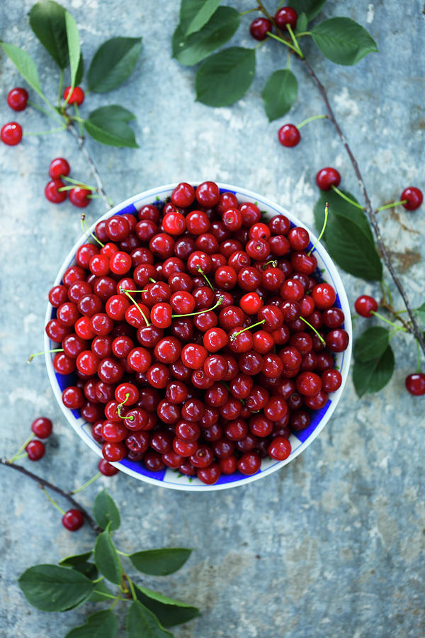 Cherry In A Bowl Photograph