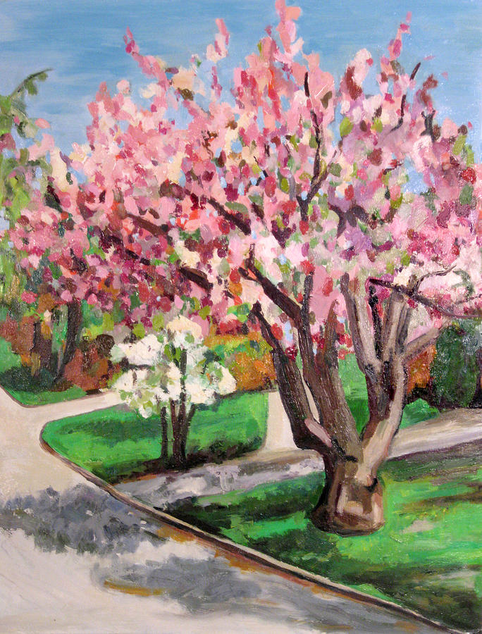 Cherry Tree And Dogwood Painting by Beverly Trivane