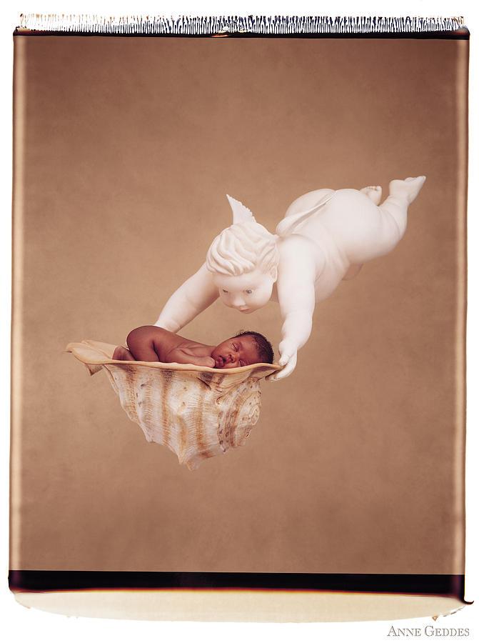 Polaroid Photograph - Cherub Holding Dominique by Anne Geddes