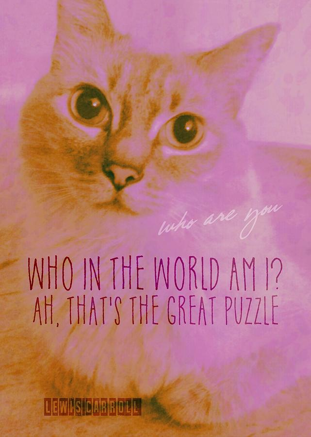 Cat Photograph - Cheshire Cat Quote by JAMART Photography