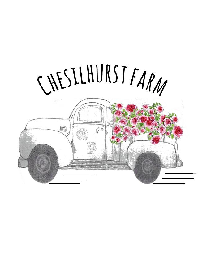 Vintage Trucks Drawing - Chesilhurst Farm by Kim Kent
