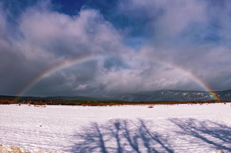 Chester Rainbow by Jan Davies