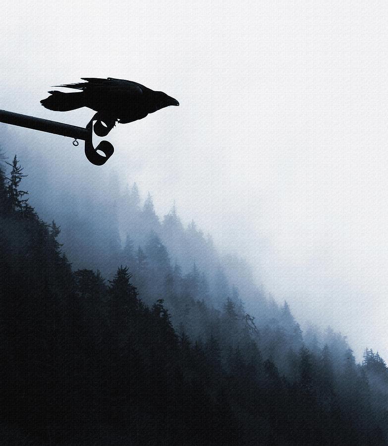 Raven Digital Art - Chevron Raven by Perri Kelly