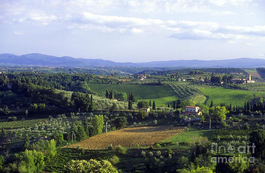 Chianti Photograph - Chianti Region In Italy by Gregory Ochocki and Photo Researchers
