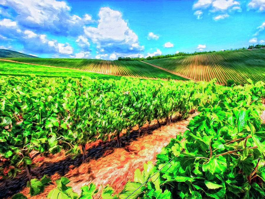 Chianti Painting - Chianti Vineyard In Tuscany by Dominic Piperata