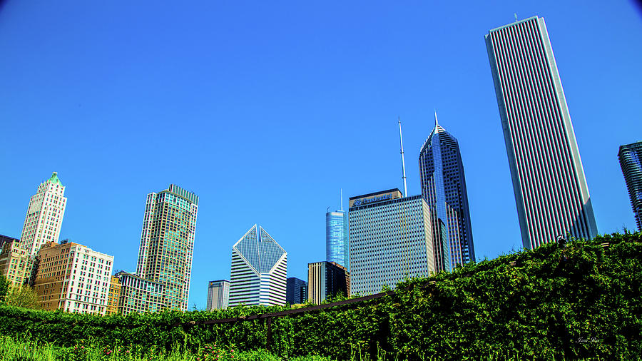 Chicago 7937 by Jana Rosenkranz
