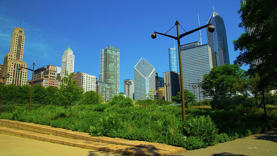 Chicago 7945 by Jana Rosenkranz