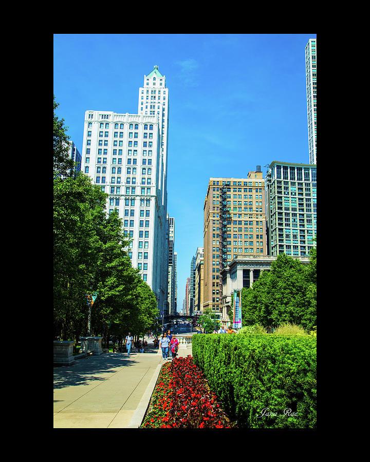 Chicago 7950 by Jana Rosenkranz