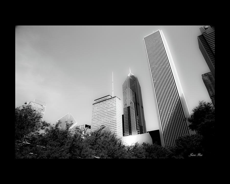 Chicago Black and White  by Jana Rosenkranz