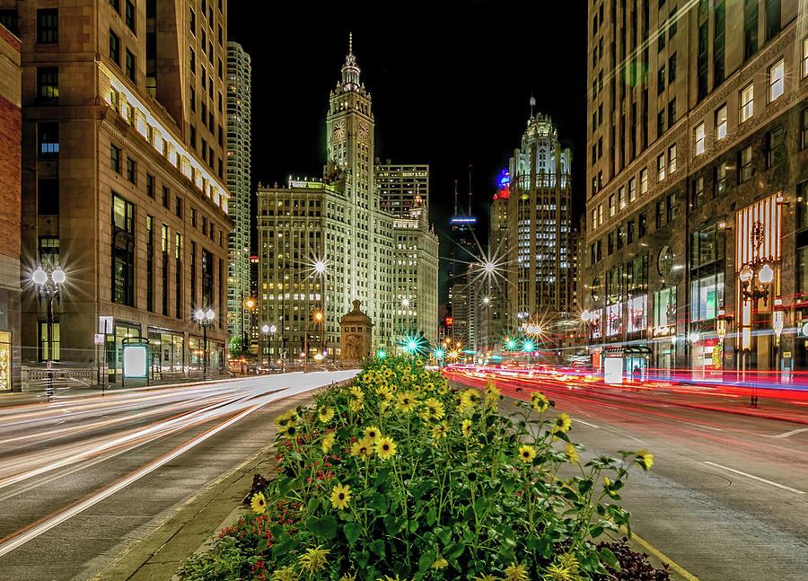 Chicago Stars by Lev Kaytsner