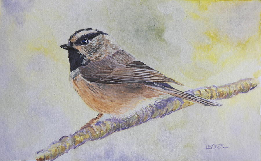 Chickadee 2 by Robert Decker