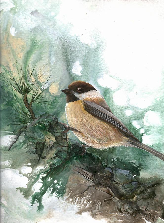 Bird Painting - Chickadee by Sherry Shipley
