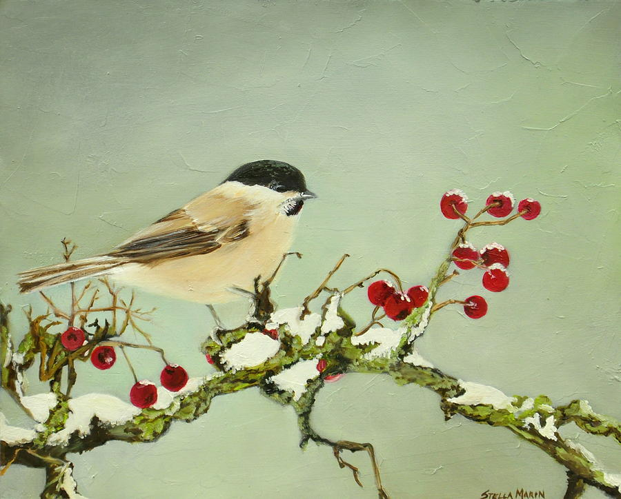 Chickadee by Stella Marin