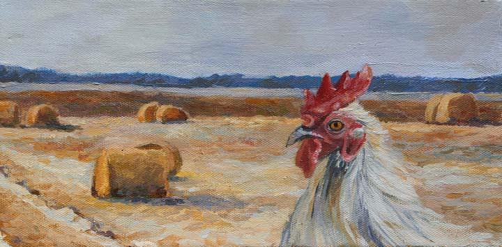 Chicken Painting - Chicken With Hay Balls by Sheila Corbitt