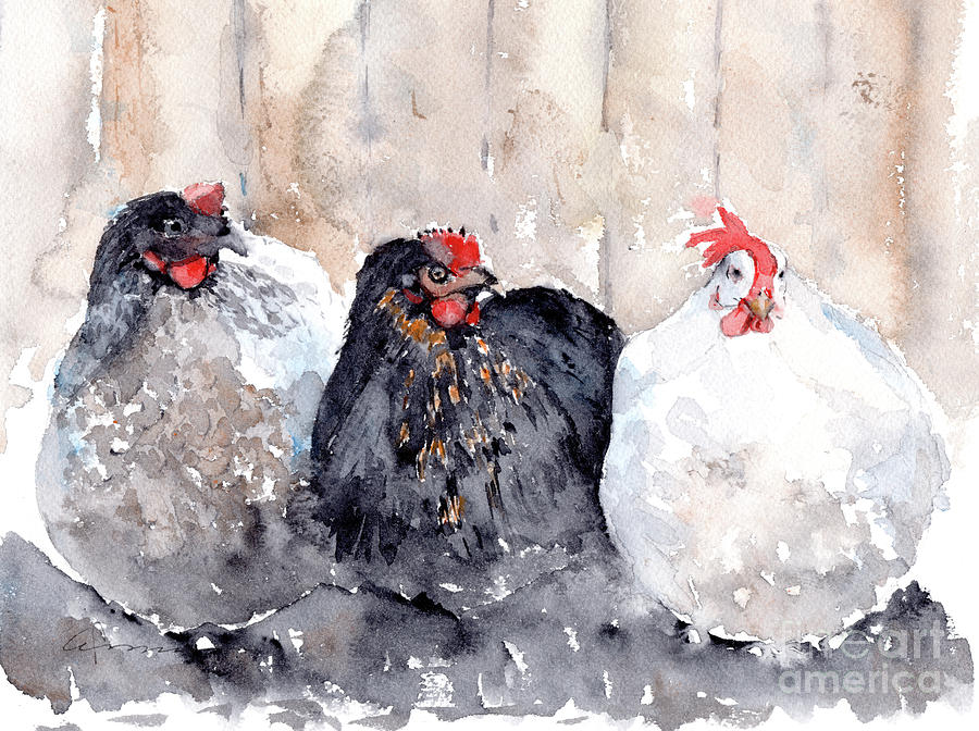 Chickens Three by Claudia Hafner