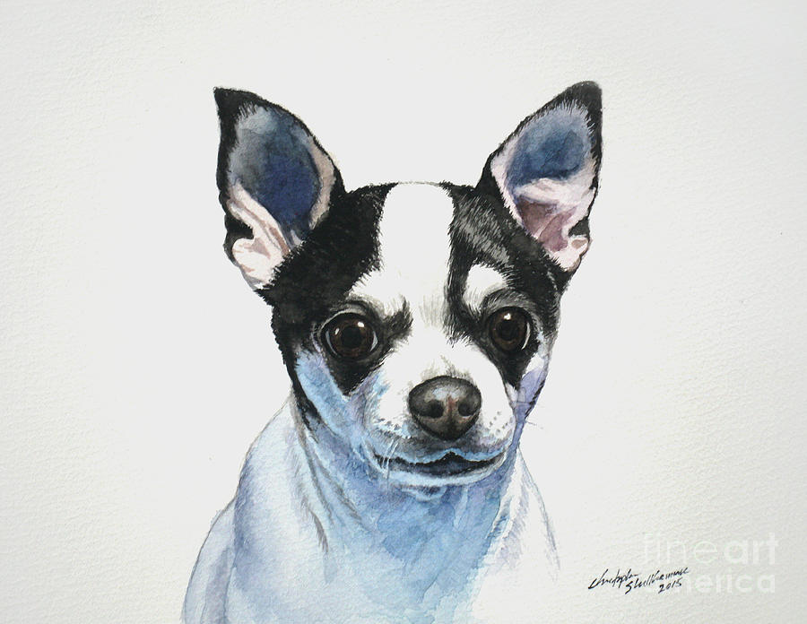Chihuahua Painting - Chihuahua Black Spots With White by Christopher Shellhammer