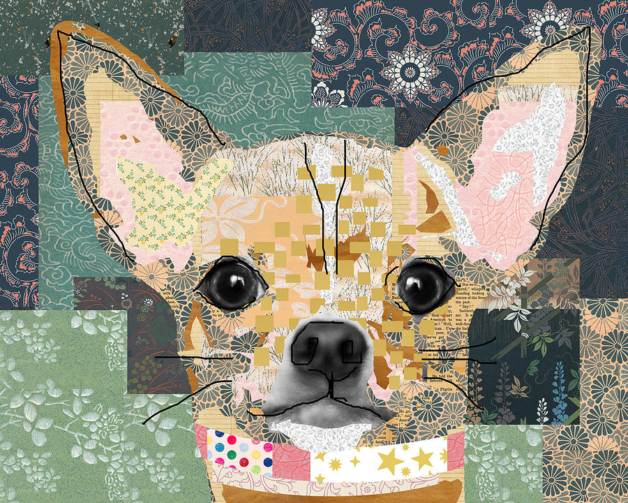 Chihuahua Mixed Media - Chihuahua Collage by Claudia Schoen