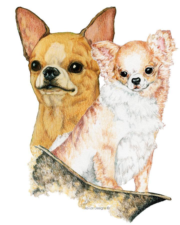 Chihuahua Drawing - Chihuahuas by Kathleen Sepulveda
