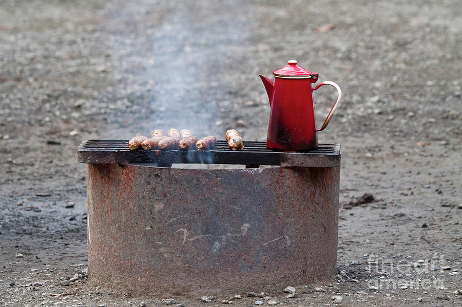 Sausages Photograph - Chilly Morning by Louise Heusinkveld