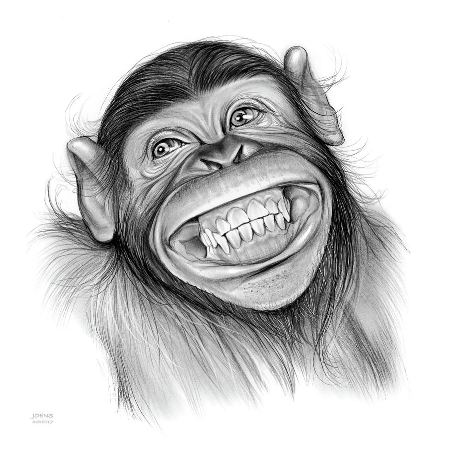 chimpanzee drawing by greg joens