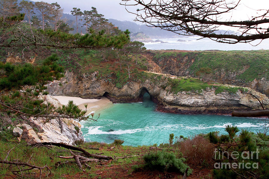 Landscape Photograph - China Cove At Point Lobos by Charlene Mitchell
