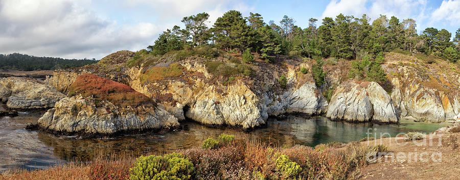 California Photograph - China Cove, Point Lobos by Yair Karelic