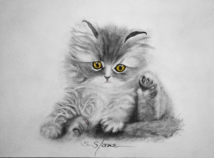 Chinchilla Persian Kitten by Sandra Stone