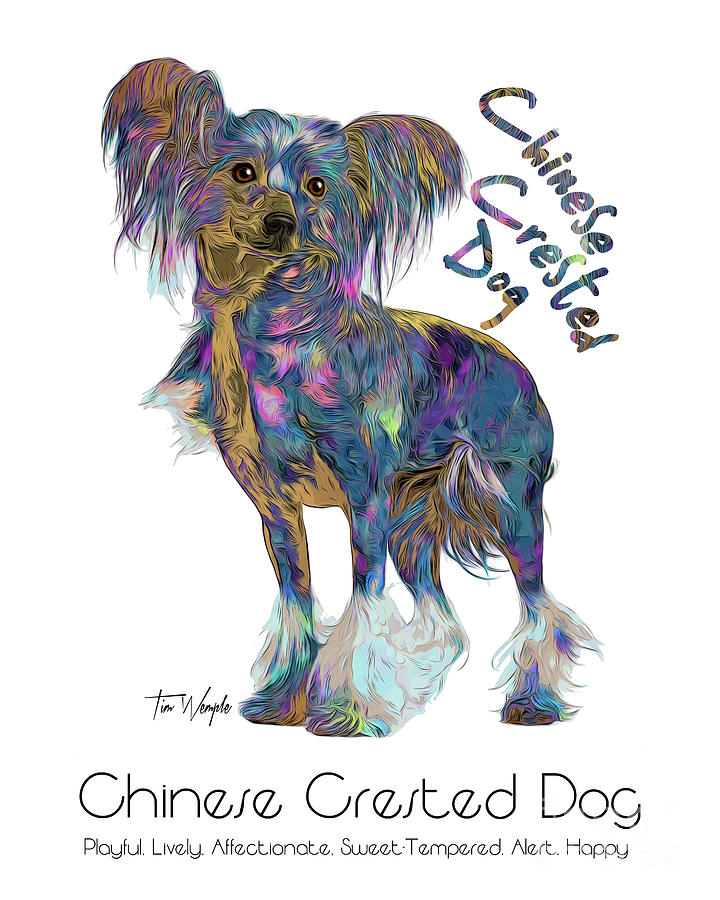 Chinese Crested Dog Digital Art - Chinese Crested Dog Pop Art by Tim Wemple