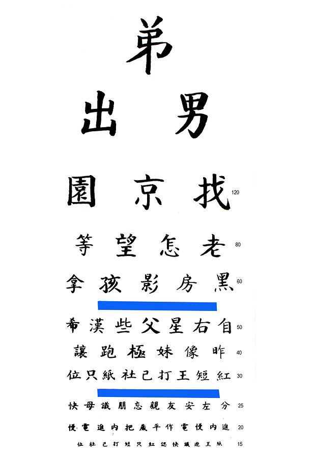 Chinese Eye Chart Photograph By Larry Mulvehill