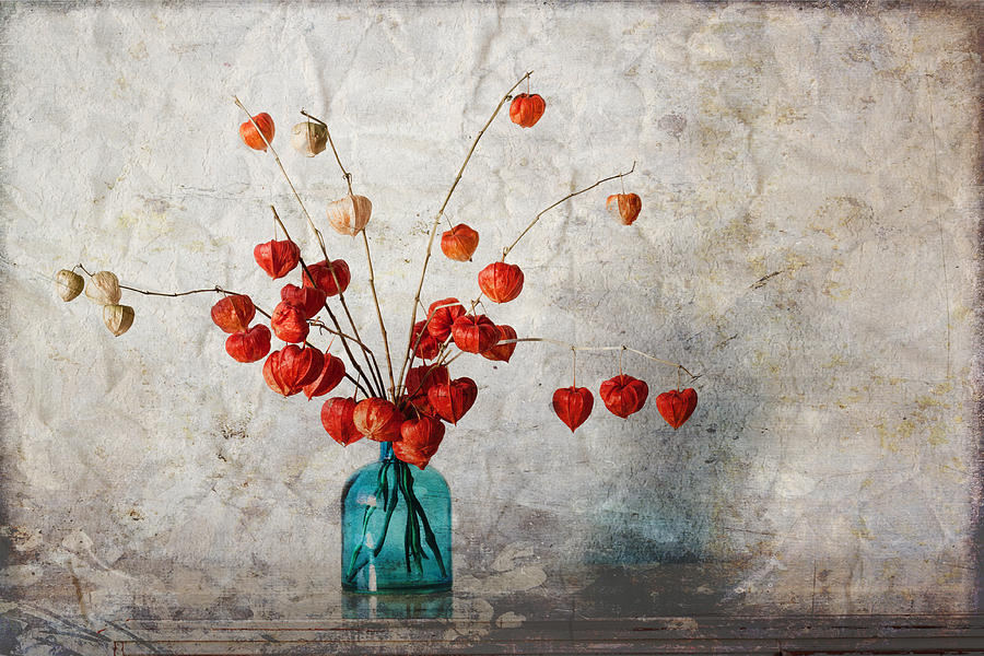 Chinese Photograph - Chinese Lanterns by Carol Leigh