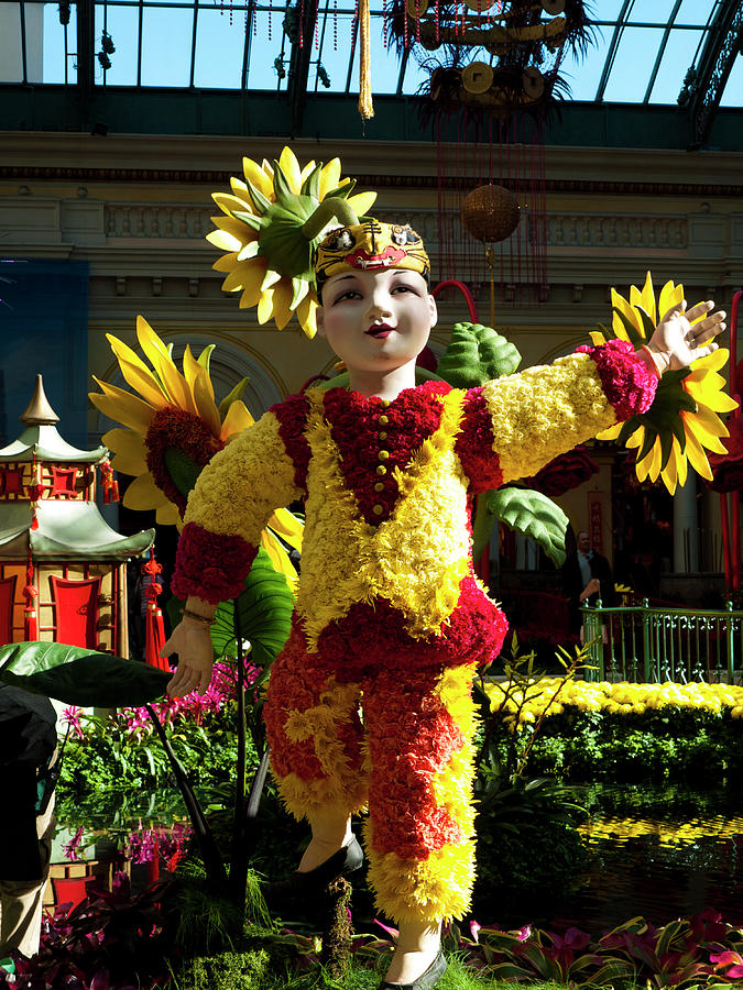 America Photograph - Chinese New Year by Rae Tucker