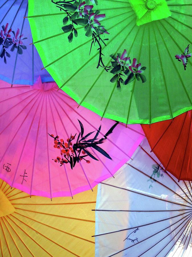 Chinese Parasols Photograph