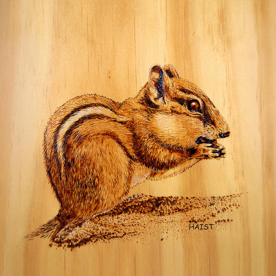 Chipmunk 2 Pillow/bag by Ron Haist