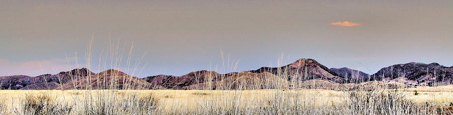 Landscape Photograph - Chiracahuas Panorama by Sharon Broucek