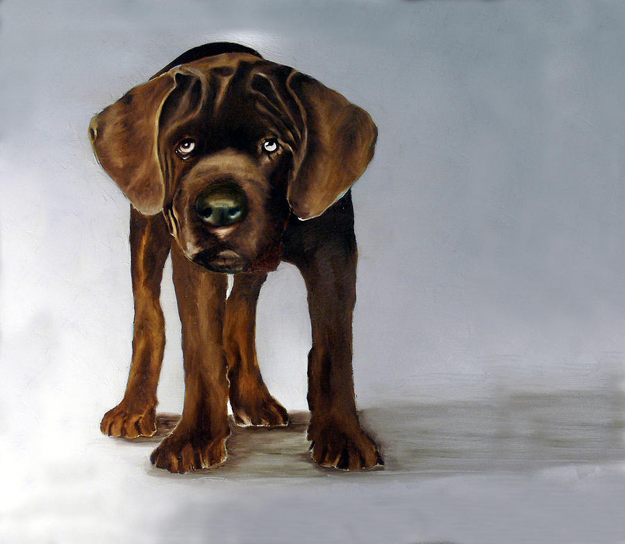 Chocolate Labrador Puppy Painting by Dick Larsen