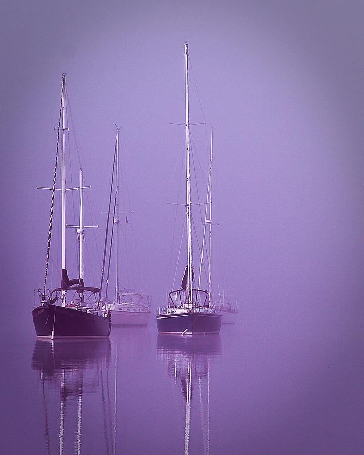 Sailboats Photograph - Christmas Boats Sleeping by Arthur Sa