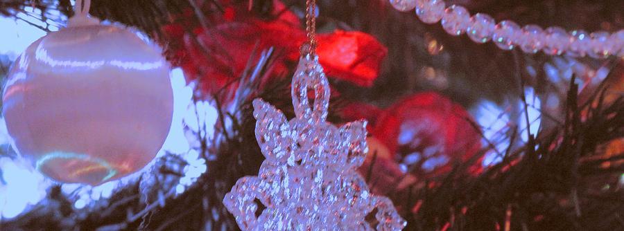 Christmas Photograph - Christmas Composition by Ian  MacDonald