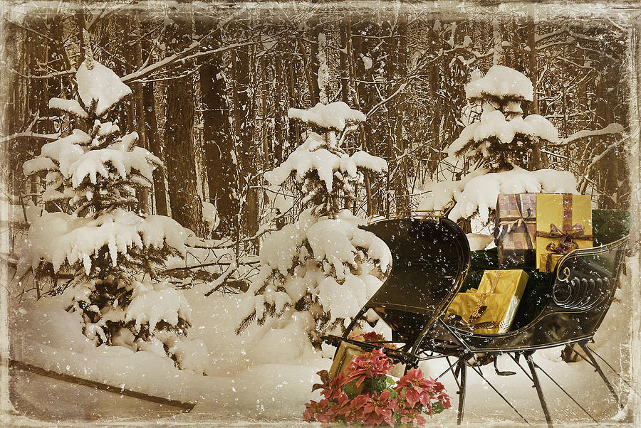 Christmas Mixed Media - Christmas Delivery by Maria Dryfhout