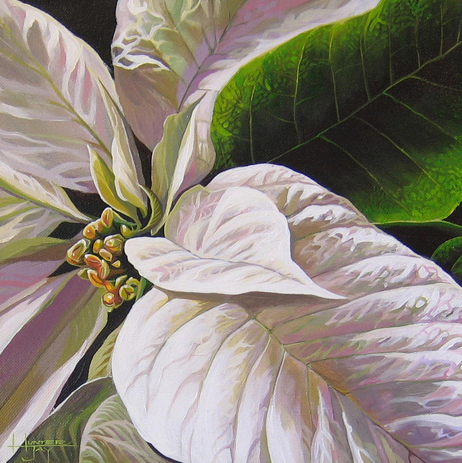 White Poinsettia Painting - Christmas Eve by Hunter Jay