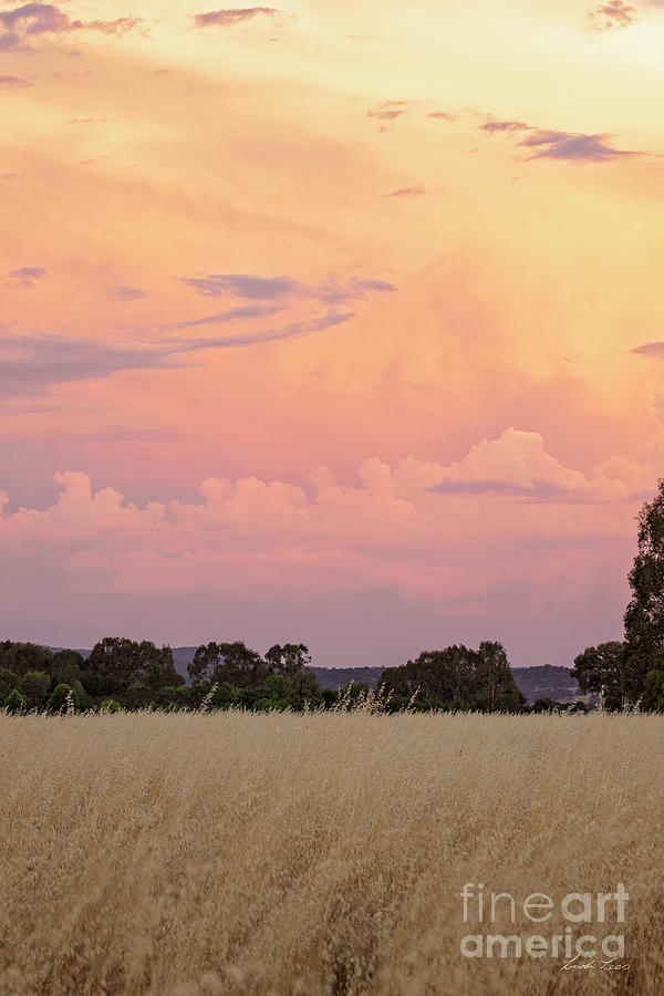 Sunset Photograph - Christmas Eve In Australia by Linda Lees
