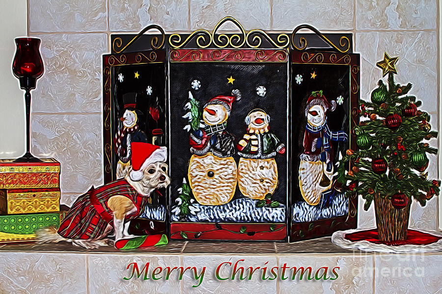 Christmas Fireplace Puppy by Photography by Laura Lee