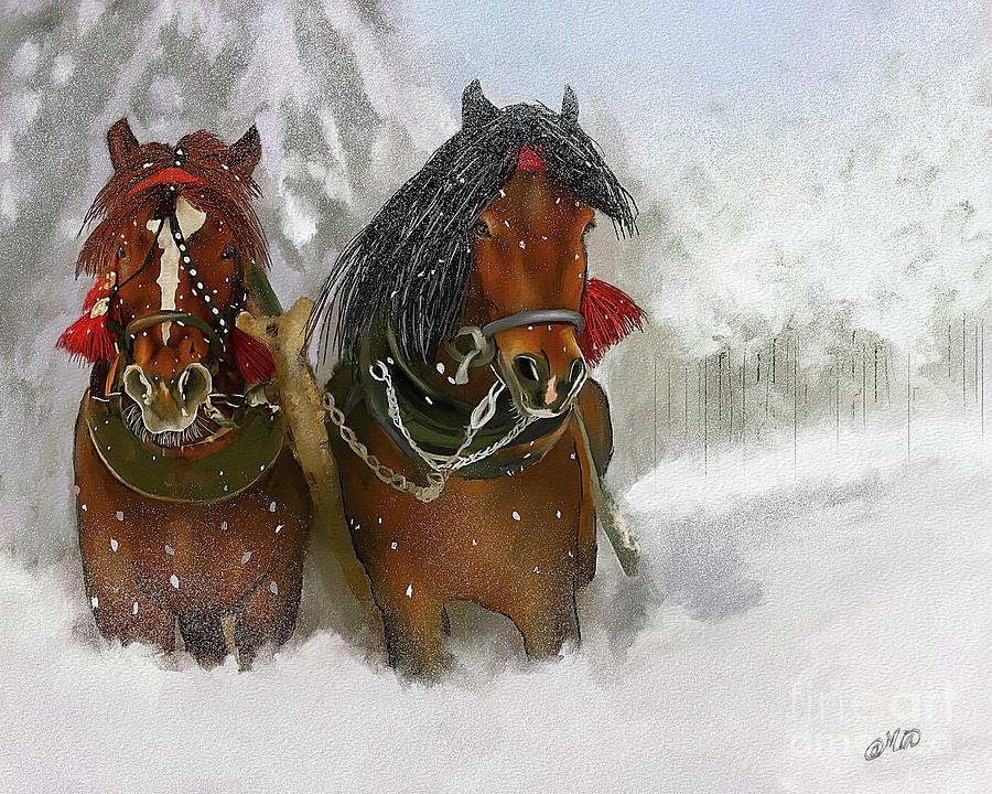 Christmas Horse.Christmas Horses In The Snow 2016